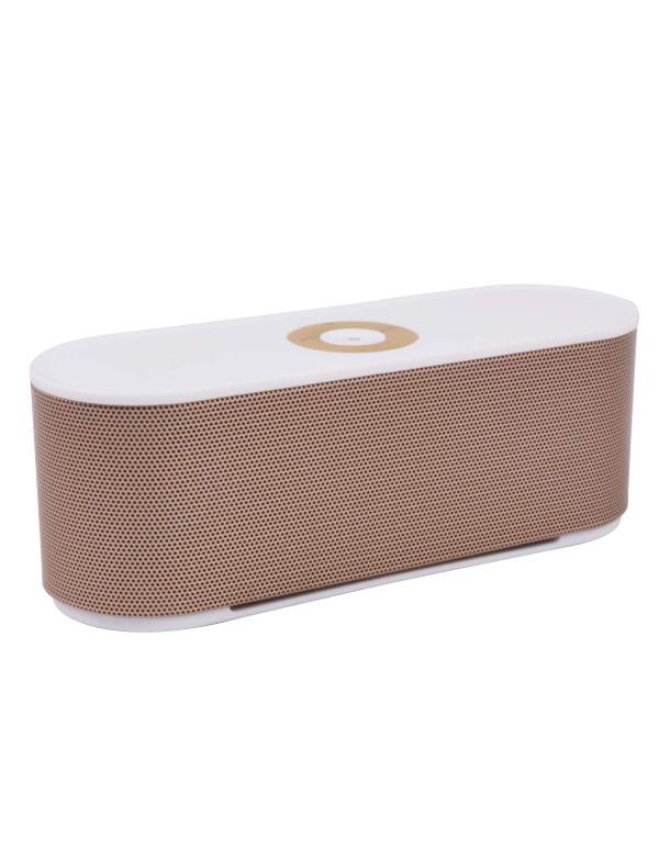 s207 Speaker