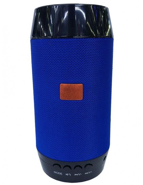 Q 300 speaker